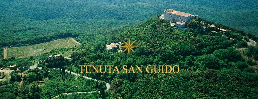 Tenute San Guido
